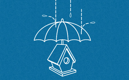 Protect your birdhouse from rain and moisture.
