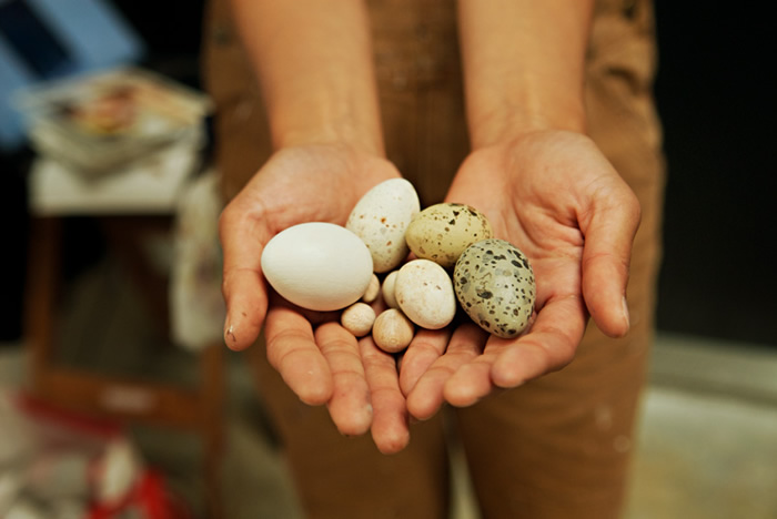 Hand-painted life-sized wooden bird eggs by Jane Kim for the Facebook Artist in Residence program