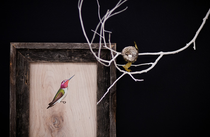 Anna's Hummingbird (Calypte anna), one of several birds painted by Jane Kim for the Facebook Artists in Residence Program