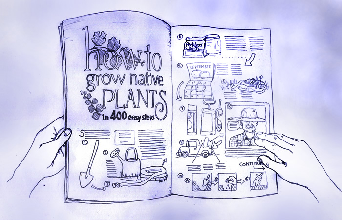 Grow Native Plants in 400 Easy Steps