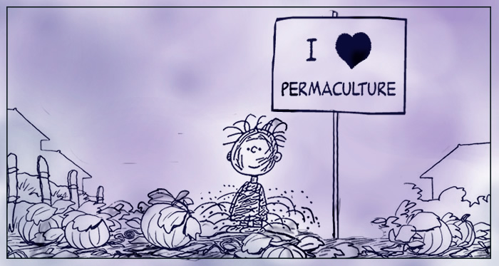 I love permaculture!