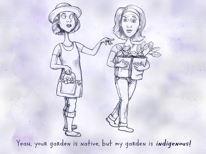 Your garden is native, but my garden is indigenous.